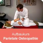 Aufbaukurs Parietale Osteopathie