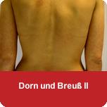 Dorn und Breuß II
