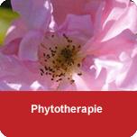 Phytotherapie - Ausbildung