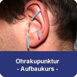 Ohrakupunktur - Aufbaukurs I