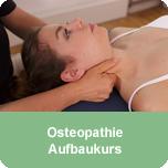 Osteopathie-Aufbaukurs Nervensystem