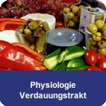 """Grundlagenseminar """"Physiologie Verdauungstrakt"""""""