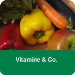Grundlagen 2 - Vitamine & Co.
