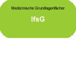 Medizinische Grundlagenfächer: IfsG