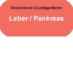Medizinische Grundlagenfächer: Leber - Pankreas