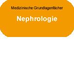 Medizinische Grundlagenfächer: Nephrologie
