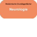 Medizinische Grundlagenfächer: Neurologie