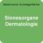 Medizinische Grundlagenfächer: WE-Sinne-Derma