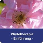Phytotherapie - Einführung